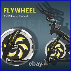 Indoor Exercise Stationary Bike Fitness Racing Bicycle withResistance Steel